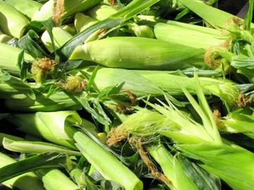 Зерновой трейдинг